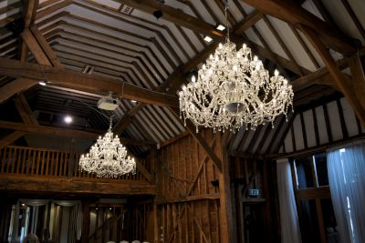30 Arm Crystal Chandeliers