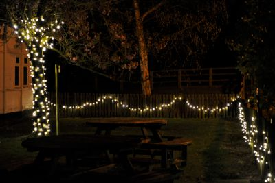 Fairy Lighting for Tree and Fences