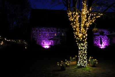 Fairy Lit Tree Trunk with Flood Lighting