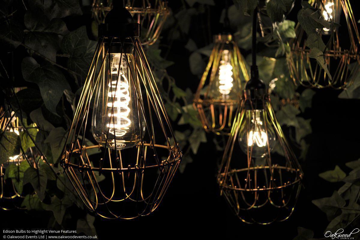 Edison Bulbs | Oakwood Events