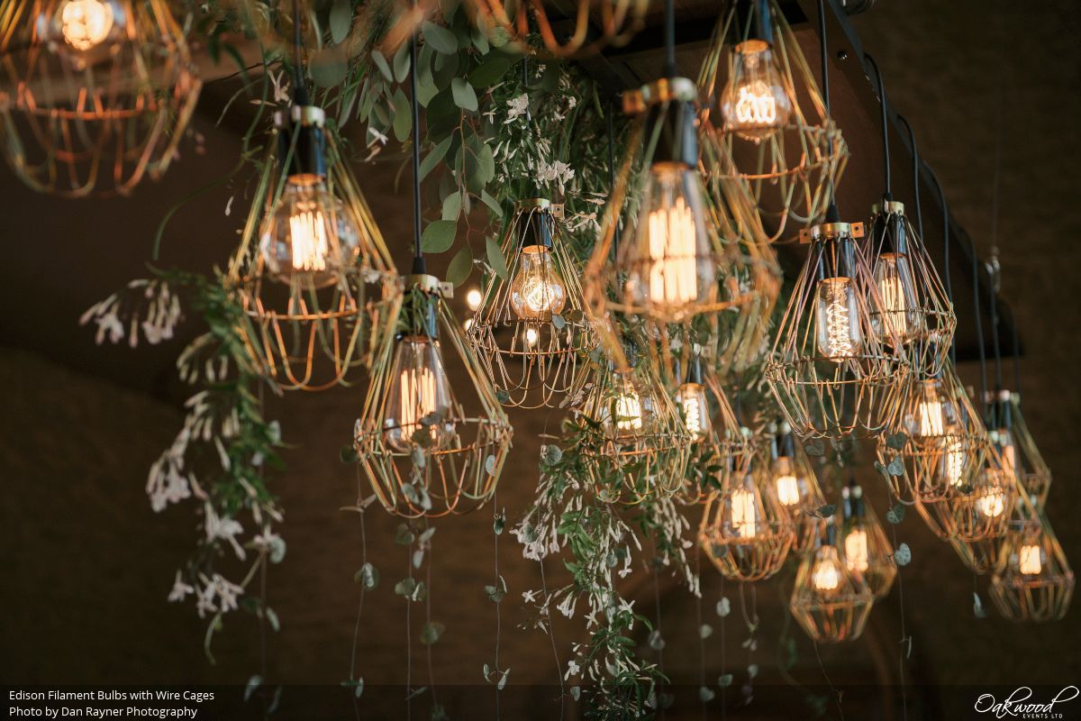 Edison Bulbs Oakwood Events Wiring An Old Light Fixture Uk Filament With Wire Cages