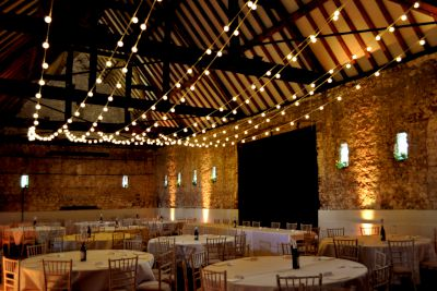 Festoon Light Ceiling Canopy