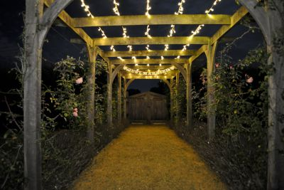 Outdoor Walkway Fairy Lights